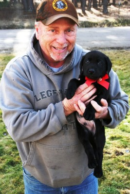 Labs-R-It Labrador Retriever Training Methods Randy and Puppy